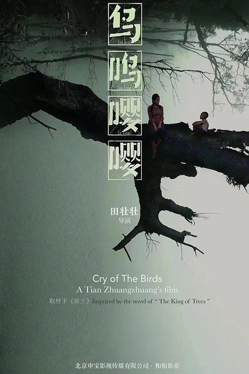 电影投资:周奇担任男主,出演电影《鸟鸣嘤嘤》
